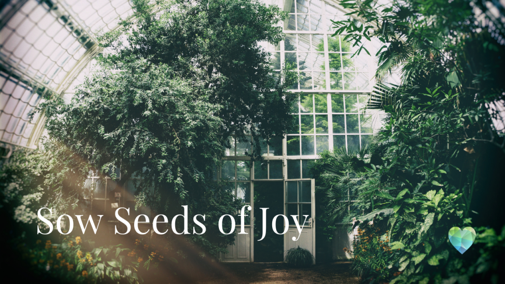 Take a look at the Joy Of Plants top list of Houseplants for wellbeing and stress relief. There are some wonderful